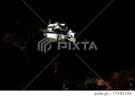 玄宮園から見た彦根城のライトアップ 77593194