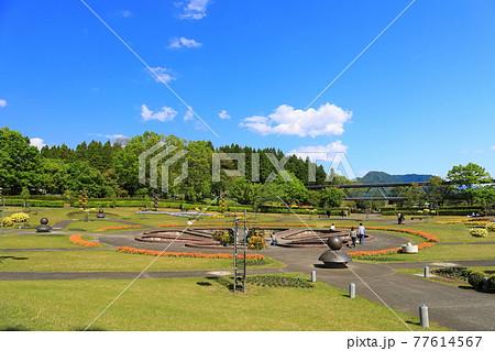 【鳥取県】晴天下のとっとり花回廊(霧の庭園) 77614567
