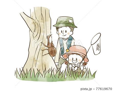 昆虫採集をしている親子 77619670