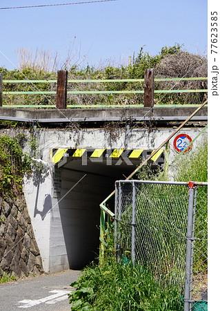 2021年4月20日撮影:JR中央線橋架道橋 77623585