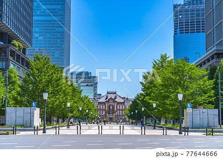 東京の都市風景 行幸通りから見る東京駅 77644666