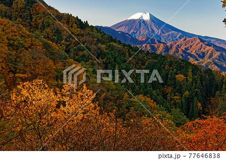 都留・九鬼山稜線の紅葉と富士山の眺め 77646838