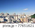 横浜・山手からの風景 77651621