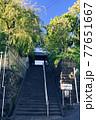 横浜・妙香寺 77651667