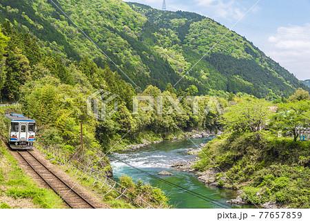 《岐阜県》長良川鉄道 77657859