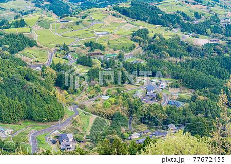 (静岡県)粟ヶ岳山頂から見下ろす、牧之原の茶畑 77672455