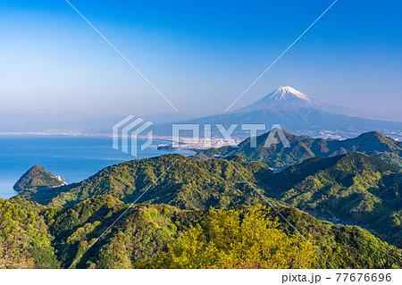 (静岡県)新緑の沼津アルプスと富士山 77676696