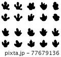 Black footprints of tapir on a white background 77679136