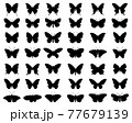 Black silhouettes of butterflies on a white background 77679139