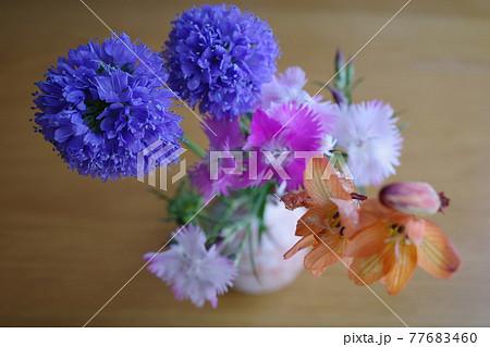 萩焼の花瓶に生けられた3種類のカラフルな春の花 77683460