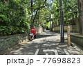 木漏れ日のある坂道の風景 77698823
