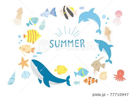 海の生き物や貝殻のイラストフレーム  背景素材 77710947