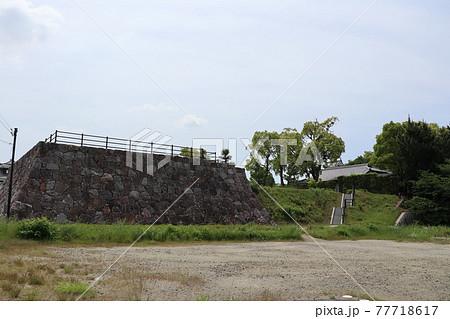 西尾市歴史公園の西尾城天守閣二之丸址(愛知県西尾市) 77718617