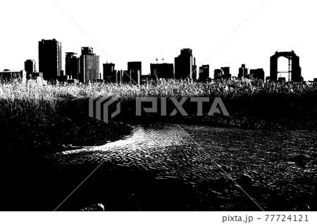 淀川中州の葦と対岸風景の白黒写真 77724121