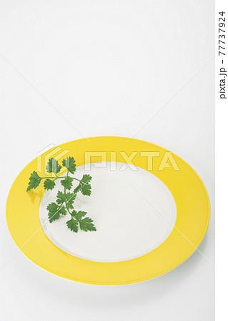 お皿の上のイタリアンパセリ ハーブ 香味野菜 77737924