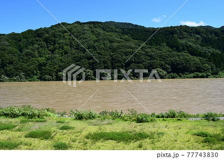 日本三大急流 最上川 77743830