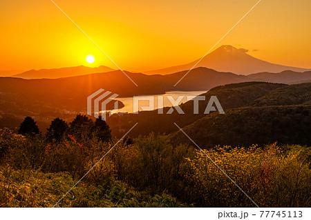 箱根・大観山の夕暮れ 77745113