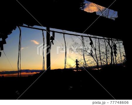山の上の神社から眺める夕暮れ時の空と御幣の影 77748606