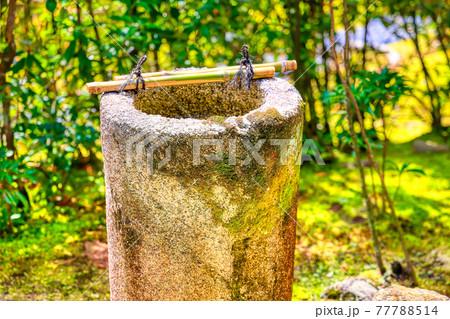 京都、妙心寺桂春院の庭園の手水鉢 77788514