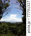 山の上から見下ろした海 まんだら堂やぐら群 77791327