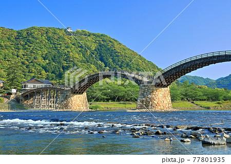 【山口県】新緑の錦帯橋と岩国城 77801935