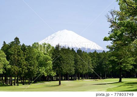 ゴルフコースと富士山 77803749