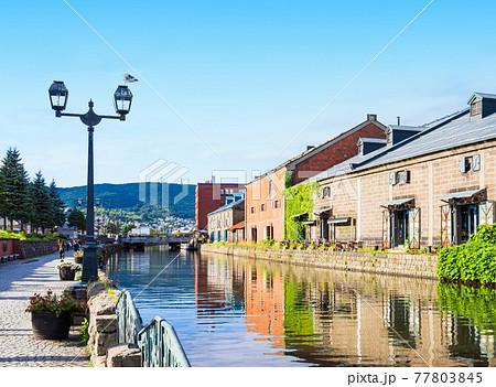 北海道 小樽運河 77803845