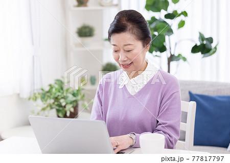 自宅でパソコン操作するシニア女性 77817797