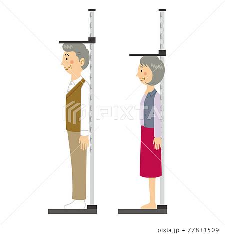 身長測定をするおじいさんおばあさん 77831509