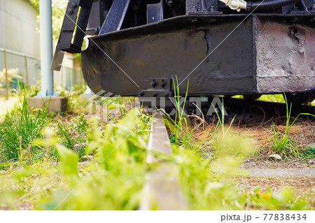 もう動かない汽車の線路に生い茂る雑草 77838434