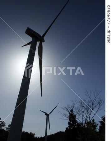 シンクロする風車のシルエット 77840685