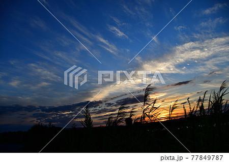 澄み渡る秋晴れの空 新潟県長岡市 77849787