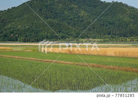 初夏の田園風景と山のリフレクション 77851285