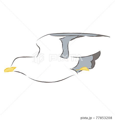 飛んでるカモメのイラスト2 77853208