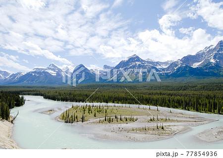 春のカナディアン・ロッキー アイスフィールド・パークウェイとアサバスカ川(カナダ) 77854936