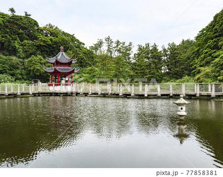 神奈川県横浜市本牧市民公園の上海横浜友好園 77858381