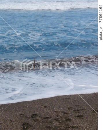 海岸の波打ち際 木の棒を刺して遊んだ跡 77864164