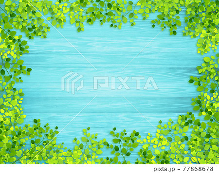 新緑 木材(背景素材) 77868678