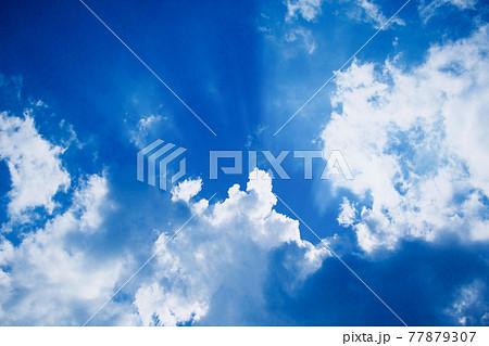 天使の梯子 77879307
