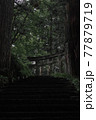 暗い雰囲気のある木々と、その奥にたたずむ神社の鳥居 77879719