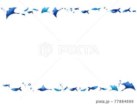 マンタと魚たち フレーム 77884699