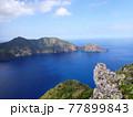 世界自然遺産 小笠原諸島の美しい海 77899843