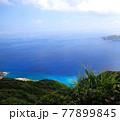 小笠原諸島の海 77899845