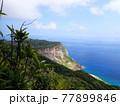 世界遺産の小笠原諸島 海と山 77899846