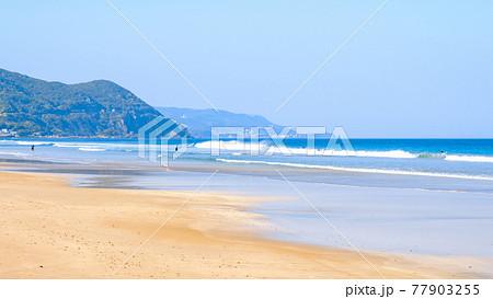 伊豆白浜の海(白浜大浜海水浴場) 77903255