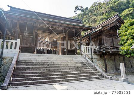 島根県松江市 春の美保神社 77905551