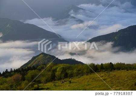 四国カルストから見える西予の山々と雲海 77918307