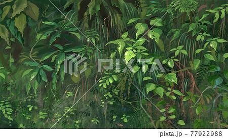 水彩ブラシ,植物 77922988