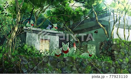 森に住む白狐 77923110