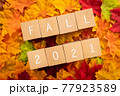 2021年の秋 「FALL」と書かれた積み木と紅葉した落ち葉 77923589